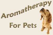 Pet essential oil Aromatherapy