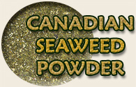 Seaweed Ingredients for Homemade Pet Food