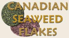 Seaweed Ingredients for Homemade Pet Food